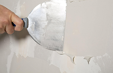 What We Do | Commercial & Residential Painting Services